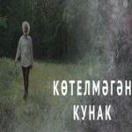 Нежданный гость татарча фильм